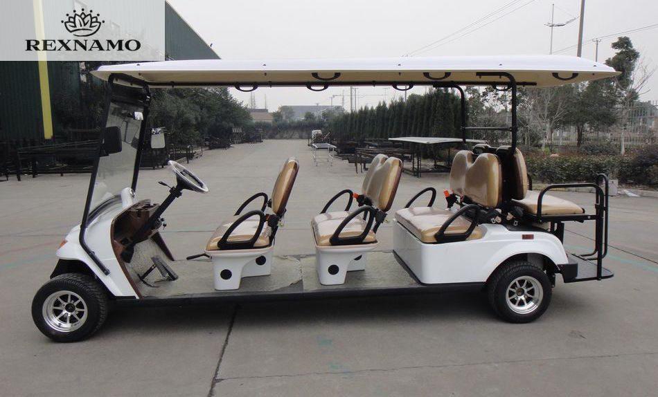 india 39 s first electric golf cart rexnamo golf cart. Black Bedroom Furniture Sets. Home Design Ideas
