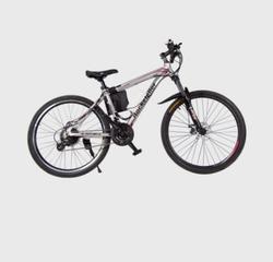 Joy E-Bike