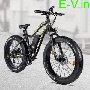 hero electric bicycle renew